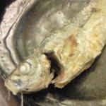 海鮮立飲み 魚範 - ふっくらおいしい