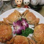 10297715 - 上海蟹 メス