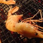kitanokaisenaburinoanohakobune - ぼたん蝦