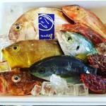 うまいもん屋 晴 - 毎日、愛媛県と島根県より直送で鮮魚が入荷します!