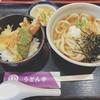 うどん市 - 料理写真:おろし小天丼セット