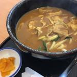 九州うどん・そば 松の屋 - 料理写真:見た目はカレーうどん