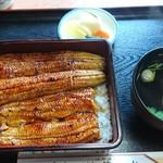 錦水 - 鰻重上2900円の全体