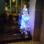 The BAR - ☆1階エレベーター横にクリスマスツリーが☆