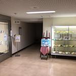 横浜市役所 第三食堂 かをり - 外観