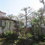 山禅 - その他写真:手入れの行き届いた庭