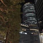 納屋橋かりんとう - 名古屋駅の夜景