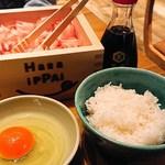 ハライッパイ - トロふわ卵かけごはん(480円)