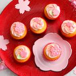 ベラズ カップケーキ - 【2月〜4月】さくらブロッサムBOX