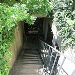 103844100 - この階段を下りて右手が入り口ですw
