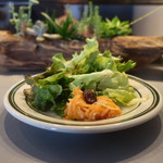 ディグ イン サンドウィッチ - キャロットラペ、レタスミックス、水菜、グリーンマスタードのサラダ