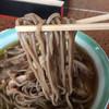 Iroha - 料理写真:肉そば  細麺