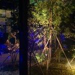 梅丸 - 中庭