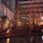 大江 - 水庭園にスポットライトがあたり幻想的