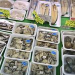 カネモ鮮魚店 - 料理写真:浜名湖産の牡蠣、鰻。鰻は白焼きです。