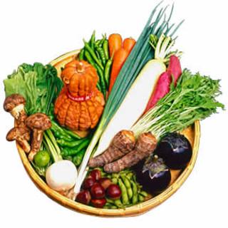 季節の京野菜