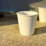 アサコ イワヤナギ プリュス - ドリップコーヒー