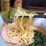 横浜家系らーめん 五十三家 - 麺
