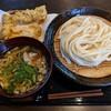 うどん家 一 - 料理写真:【2019/3】肉煮干+かしわ天