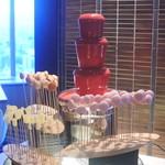 タボラ36 - チョコレートファウンテン 赤