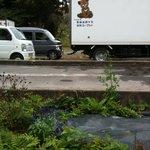 栗駒フーズ - トラックにもかわいい熊が・・・