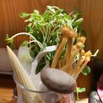 東京肉しゃぶ家 - 豆苗(とうみょう)他野菜