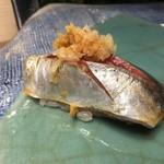 第三春美鮨 - 真鰺 95g 瀬付き 定置網漁 兵庫県沼島