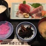 海鮮料理魚春とと屋 - お刺身ランチ