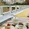 ザ・ガーデン - 料理写真:ショートケーキ&ミルクティー