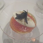 104572100 - モッツァレラチーズのムースと完熟トマトのジュレ