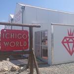 ICHIGO WORLD -