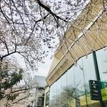 スターバックス リザーブ ロースタリー トウキョウ - 桜と外観