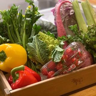 採れたての国産野菜を使用したヘルシーな料理を豊富にご用意