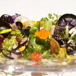 レフェルヴェソンス - 時期の野菜