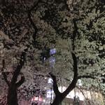 ロージナ茶房 - ロージナ茶房(大学通りの夜桜)