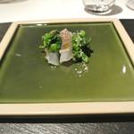 リストランテ カノフィーロ - 真鯛のクルード チーマデラーパとコラトゥーラ