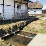そばやかた樽石 - 水場