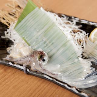生簀から揚げる活イカ!鮮度抜群の新鮮魚介