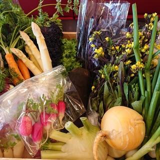 産地直送の三浦野菜をふんだんに散りばめたイタリアンをご提供