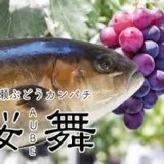 宮崎県直送鮮魚