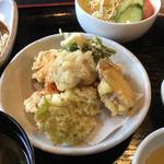 105026855 - 野菜の天ぷら