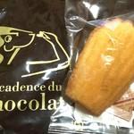 デカダンス ドュ ショコラ - ☆クッキーと桜めぐりイベント参加店☆ 500円以上お買い物で【マドレーヌなど焼菓子】プレゼント マドレーヌを頂きました♪