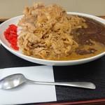 京都だるまや食堂 - スタミナカレー特大豚肉増し増し