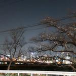 多摩川ダイナー - 夜の多摩川