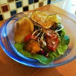 105183773 - 味付けの違う色々なお野菜をトッピングした、お野菜たっぷりピコロレサラダ