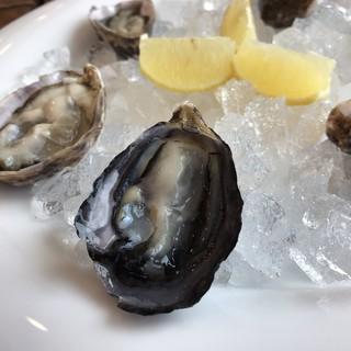 ファームスズキ - 料理写真:クレールストライプオイスター(塩田熟成縞牡蠣) 生後1年未満、未産卵の小ぶりな牡蠣