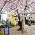 105197209 - 桜の季節(リトルブレッズトゥーゴー 京成船橋)