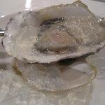 10522327 - 牡蠣です。濃厚な牡蠣のソース添え