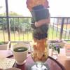 さんぽう穀ワリー - 料理写真:★★★ パフェ 頭でっかちでグラスの中はスカスカです(^_^;) ちょっと食べにくい
