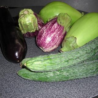 菌床栽培、無農薬・有機栽培野菜がふんだんに!
